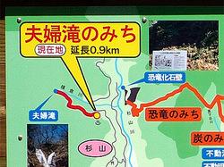 Katsuyama_2008_8