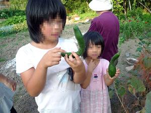 Fieldwork_2008